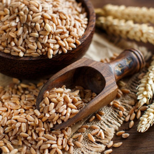 A BASIC GUIDE TO WHOLE GRAINS