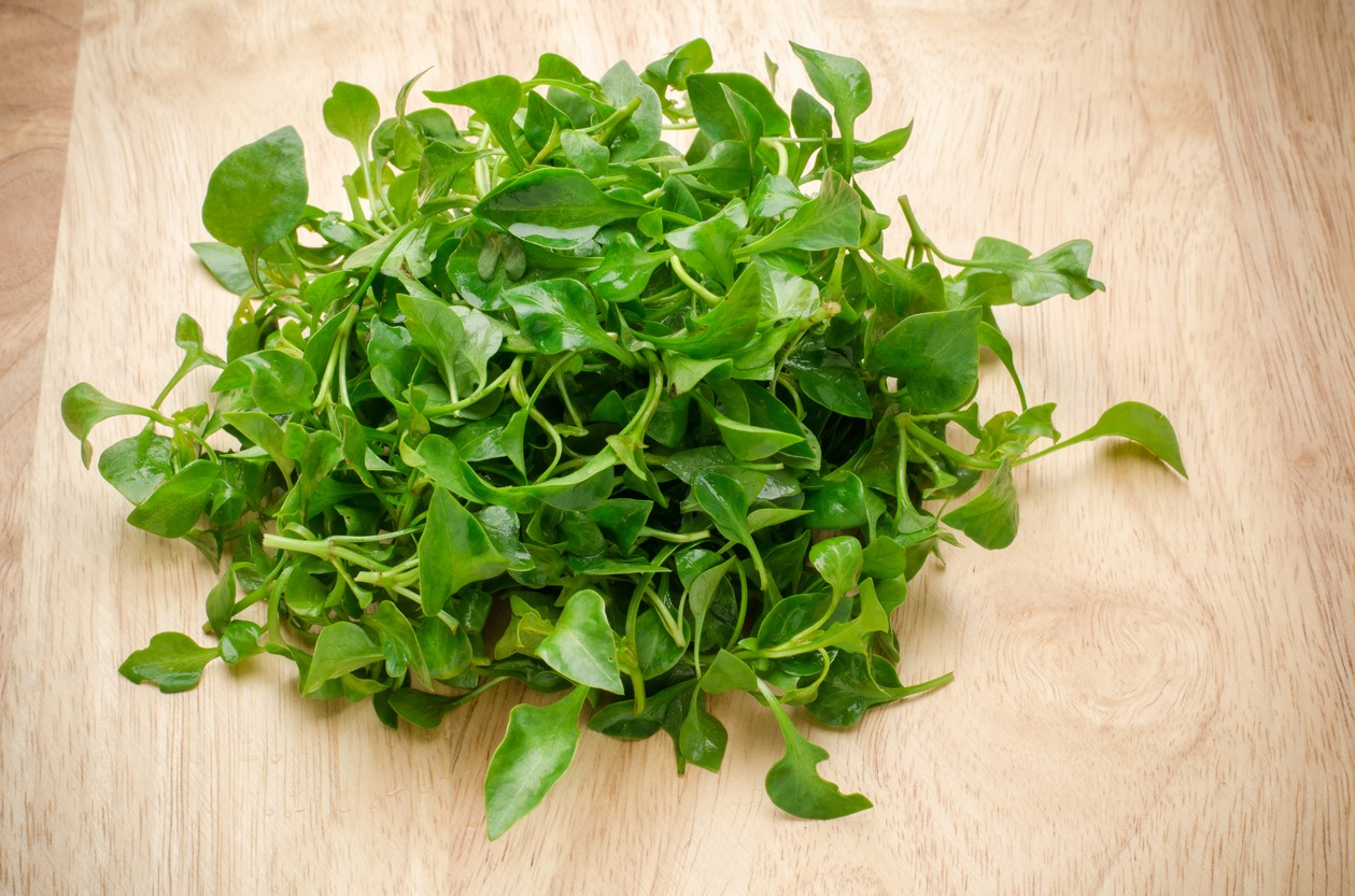 WATERCRESS: A Superfood Powerhouse