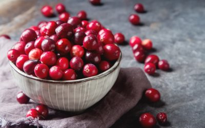CRANBERRIES: A Fall Tradition