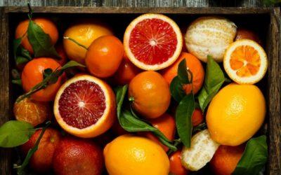Tip for Reducing Food Waste – Dried Citrus Peels
